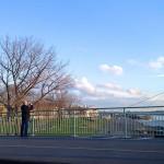 Deutzer Brücke mit Blick auf die Kranhäuser