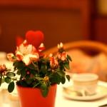 Freundlicher Frühstücksraum im Hotel Ilbertz