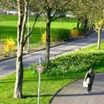 Mindener Straße in Höhe des Landschaftsverband Rheinland