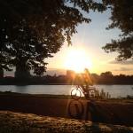 Sonnenuntergang im Rheinpark